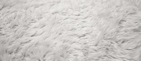 White natural and soft texture fur background