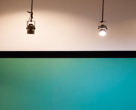 downlight: Blank green background display with two halogen downlight