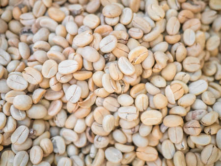 unroasted: Close up of unroasted coffee beans