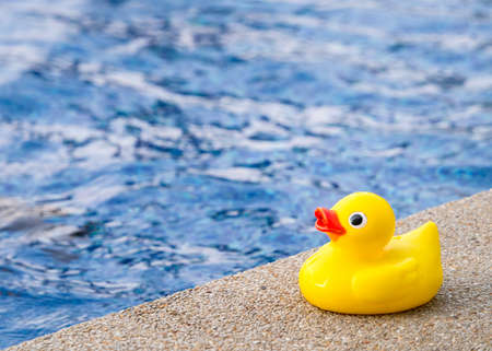 Rubber duck beside the swimming pool in concept of baby exercise