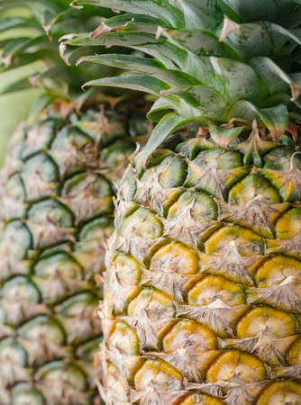 Closeup of the fresh organic two pineapples