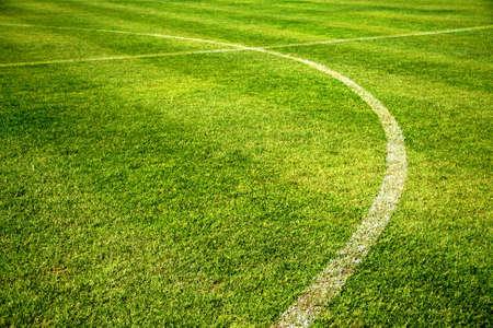 white curve line on beautiful green Football field Reklamní fotografie - 19910753