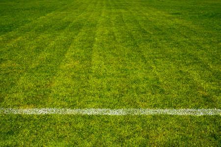 white straight line separate on beautiful green Football field Stockfoto