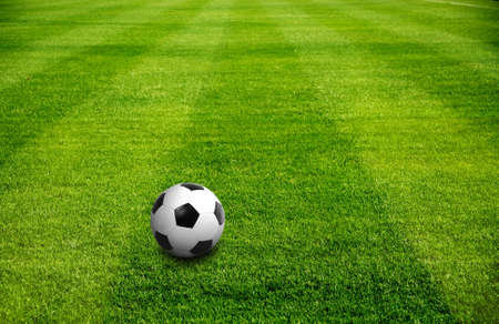 a ball on beautiful green grass very well for football sport Stock Photo