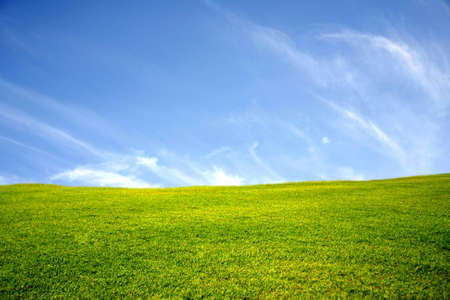 green meadow with blue sky and cloud Imagens - 20385339