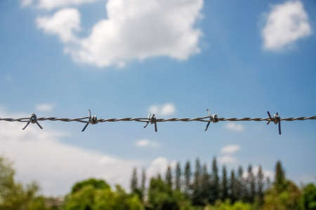 barbed fence with blue sky with cloud and top tree Stock Photo - 21821702