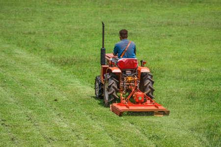 a man on mower cutting grass in football field Stockfoto