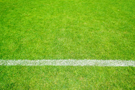 green grass of football sport field with white line for background photo
