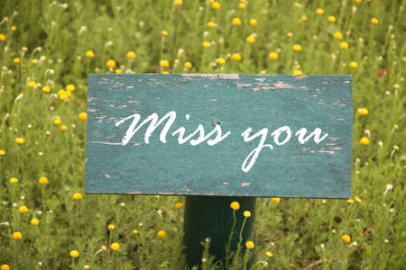 miss you, text on green paint wooden board with post pole in flower garden