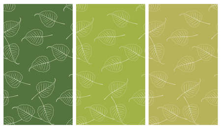seamless green set, Bo leaf backdrop vintage style