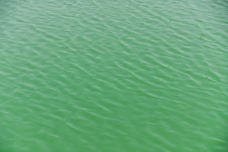 beautiful fresh of green water wave in pool for background