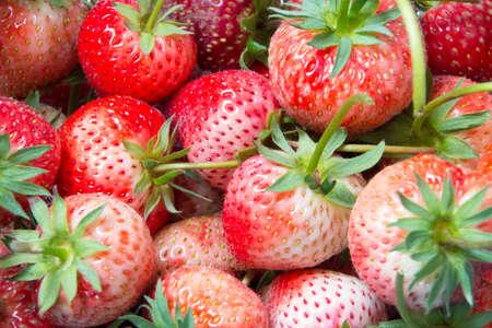 red strawberry full frame