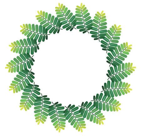 green leaves frame on white background Reklamní fotografie - 128701900