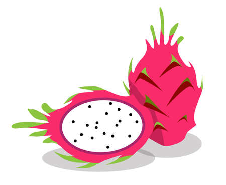 dragon fruit, flat vector illustration on white background Reklamní fotografie - 128701919