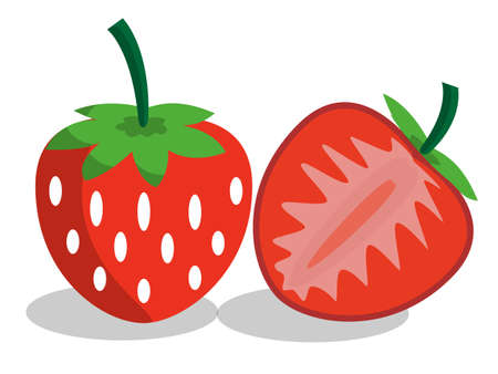 red strawberry on white background, vector illustration