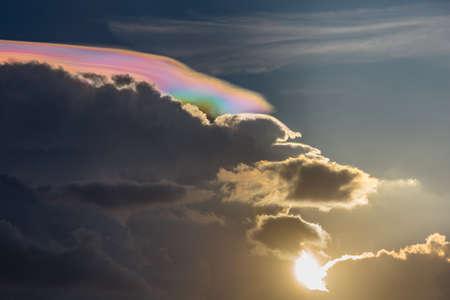 iridescent: amazing Iridescent Pileus Stock Photo