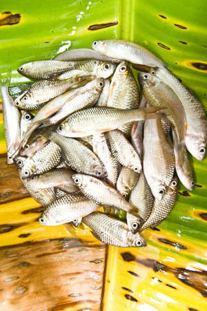 Fresh fish on banana leaf preparing for Thai food,