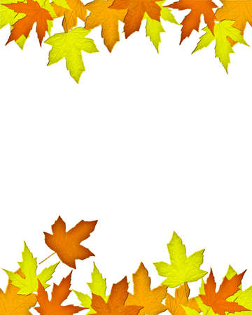 THANKSGIVING LEAVES ON WHITE BACKGROUND