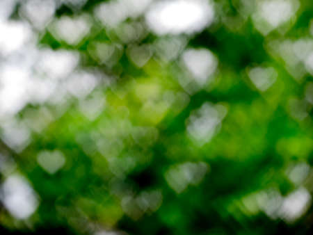 green heart bokeh backgroung Stock Photo
