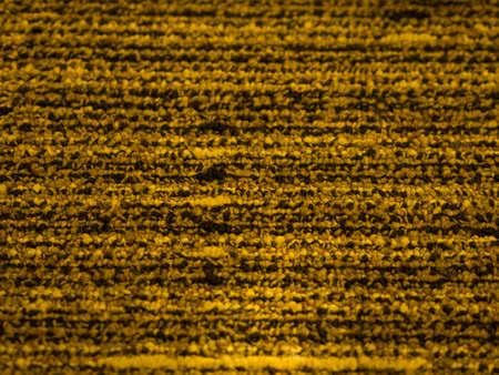 floor mat: selective focus  gold color floor mat texture background Stock Photo