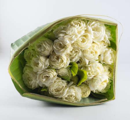 panicle: jasmine flower panicle with banana leaf isolate on white background