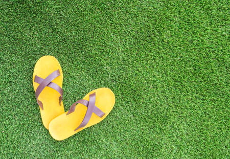 sandal: sandalia en el fondo de hierba verde