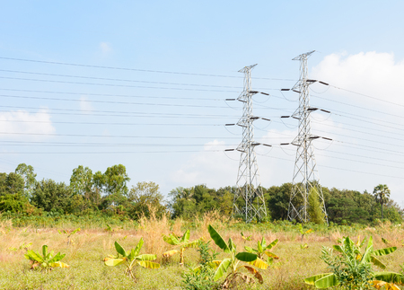 conductor electricity: High voltage transmission towers in field