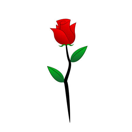 florist: red rose Illustration