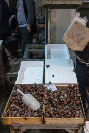 THESSALONIKI, GREECE - DECEMBER 24, 2015: Alive snails sold as food on the Thessaloniki green and food market. Snails are a common dish in the Mediterranean gastronomyPicture of a shelf with alive snails on Thessaloniki central market. Snails are usuall
