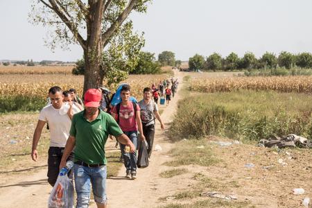 TOVARNIK, CROAZIA - 19 SETTEMBRE 2015: Rifugiati che camminano attraverso i campi vicino al confine tra Croazia e Serbia, tra le città di Sid Tovarnik sulla rotta dei Balcani, durante la crisi dei rifugiati Immagine di un gruppo di famiglie di rifugiati, che trasportano pesanti lugga