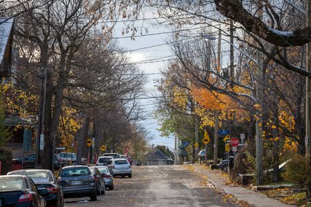 OTTAWA, CANADA - NOVEMBER 10, 2018: Typical north American residential street in autumn in Centretown, Ottawa, Ontario, during an autumn afternoon, with cars parked Editorial