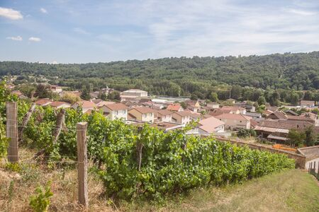 Panorama of Saint Savin, small French village of Isere, in the Dauphine province, with medieval catholic church & other historic building seen from the vineyards of the village used for wine production