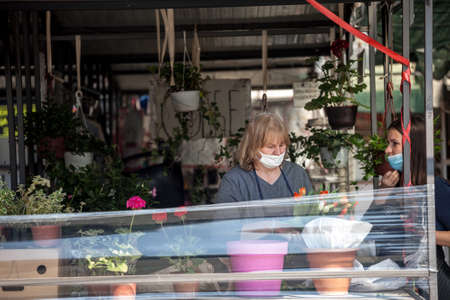 BELGRADE, SERBIA - APRIL 23, 2020: Woman a merchant on Belgrade green farmers market, selling plants and flowers wearing face mask protective equipement on Coronavirus Covid 19 crisis.