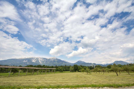 Panorama of the plains of Gorenjska carniola, in bled, slovenia, with fields, farmlands and farms and Julian Alps mountains in background. It's hotspot of Slovenian agriculture and the alpine rural industry. Imagens