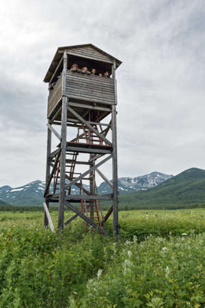 the far east: NALYCHEVO, KAMCHATKA PENINSULA, RUSSIA - JULY 12, 2014: Observation tower of Kamchatka brown bears and wildlife in the Central cordon of nature park Nalychevo and group tourists on tower. Russian Federation, Far East, Kamchatka Peninsula.