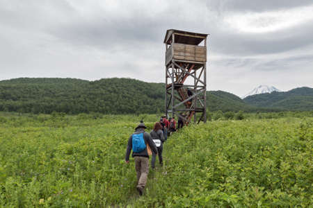 far east: NALYCHEVO, KAMCHATKA PENINSULA, RUSSIA - JULY 12, 2014: Group of tourists and travelers go to observation tower of brown bears and wildlife in the Central cordon of nature park Nalychevo. Russian Federation, Far East, Kamchatka Peninsula.