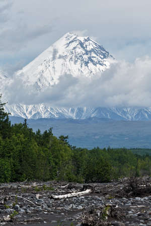 summery: Volcanic landscape: beautiful summery view of Kamen Volcano on a cloudy day. Russia, Far East, Kamchatka Peninsula.