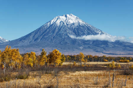 far east: Kamchatka Peninsula landscape: beautiful autumn view of the active Koryak Volcano and blue sky on a clear sunny day. Eurasia, Russian Far East, Kamchatka Region, Avachinsky-Koryaksky Group of Volcanoes.