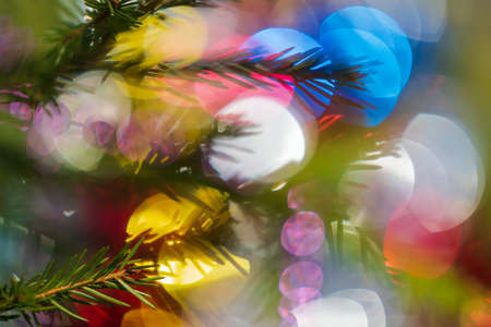 Silhouette of branch Xmas tree with needles. Happy New Year ornament decorations, colorful defocused abstract blurry bokeh background. Out of focus Christmas lights, lens flare photo effect.