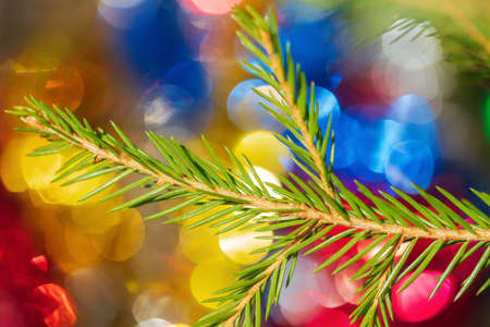Green Xmas pine tree branch with needles on background colorful festive textured effect Christmas ornament bokeh for celebration Happy New Year. Close-up view, selective soft focus on foreground. Stockfoto - 159505997