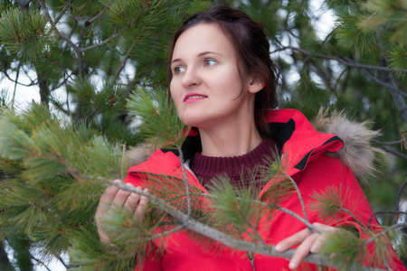 Cute brunette woman with long hair dressed in red winter jacket and brown pullover standing in pine forest and holding branch with needles in hands. Portrait of romantic young woman looking to side. Stockfoto - 160669579