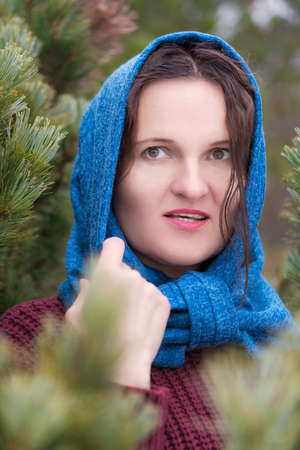 Portrait of brunette woman with long hair and brown eyes standing in pine forest. Pretty young woman dressed in brown knitted pullover and blue scarf thrown over her head. Stockfoto
