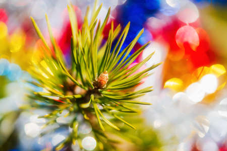 Christmas pine tree branch with needles. Close-up of Xmas ornament decorations for Happy New Year. Selective soft focus on foreground. Lens flare, bright abstract blurry bubble bokeh on background. Stockfoto
