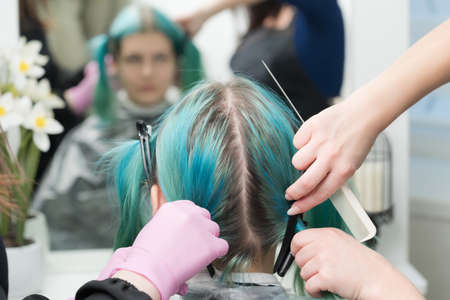 Back view of female head with emerald hair color and regrown hair roots. Woman sits in chair by mirror, two professional hairdressers combing clients hair before hair dyeing process in beauty salon. Stockfoto