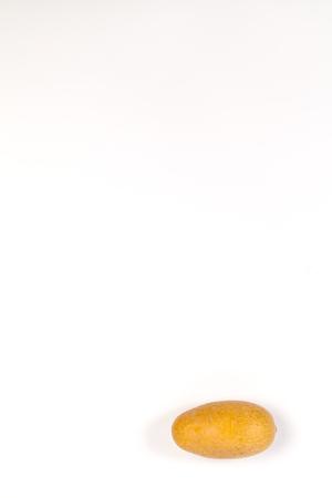 Fake Potato isolated on white background
