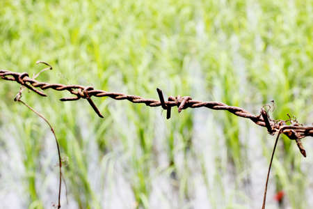 incarcerated: Barbed wire Stock Photo