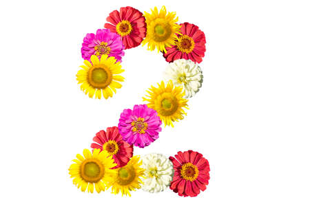 arabic numeral: number made from flowers, arabic numeral