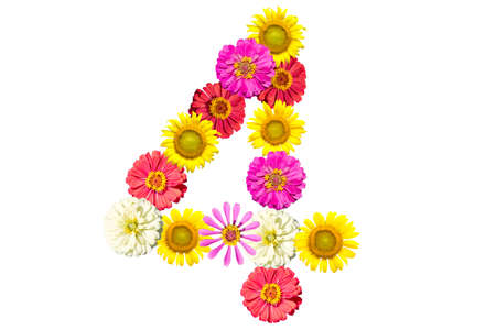 number made from flowers, arabic numeral