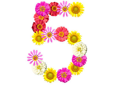 arabic number: number made from flowers, arabic numeral