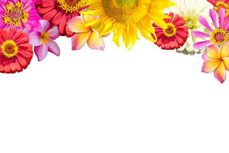 ミックスの花のフレーム 写真素材 - 34003971